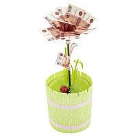 Денежное дерево малый 5000 рублей