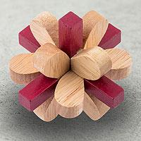 Открыть инструкцию Головоломка деревянная в коробке Омикрон Эврика