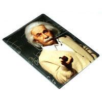 Обложка на паспорт N158 Энштейн
